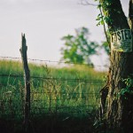 Ravenswood_backroad